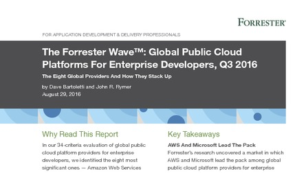 The forrester wave global public cloud platforms for enterprise developers q3 2016.pdf thumb rect larger