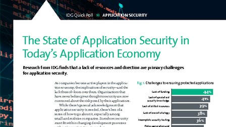 2017 state of application security findings.pdf thumb rect larger