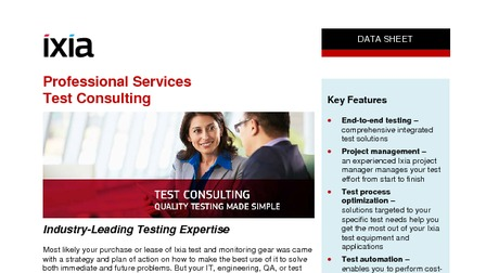 Professional services test consulting.pdf thumb rect larger